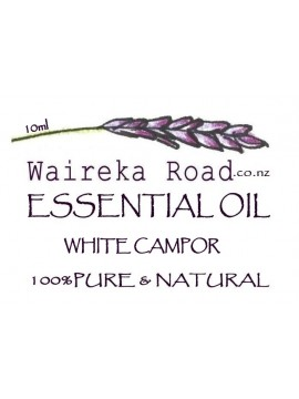 White Camphor Pure Essential Oil 10ml